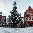Macclesfield Christmas Tree by David W Bailey