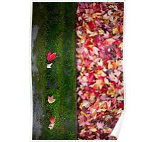 Fallen Moss Poster