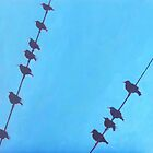 Birds Wires 7 by eolai