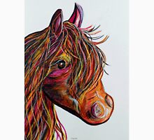 A Stick Horse Named Amber T-Shirt