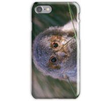 Flammulated Owlet iPhone Case/Skin