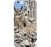 Great Horned Owl and Owlet iPhone Case/Skin
