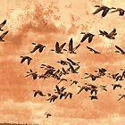 Geese On The Move by Deborah  Benoit