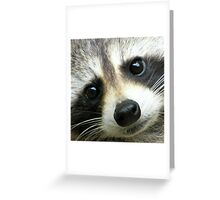 Sweet Face Greeting Card