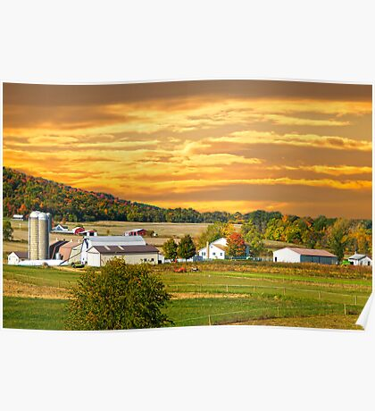 Golden Glow Pike County Farms Poster