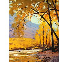 Aspen Gold Photographic Print