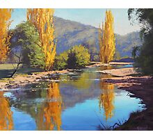 Golden Poplars Tumut River, Australia Photographic Print
