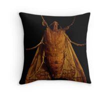 Nightime Visitor Throw Pillow