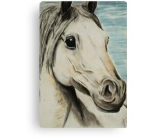 Tinted charcoal horse Canvas Print