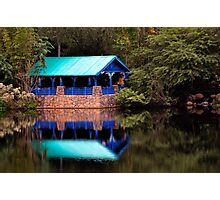 Animal Kingdom, Disney World, Orlando, Florida Photographic Print