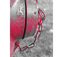 Fire Hydrant 2 Photographic Print