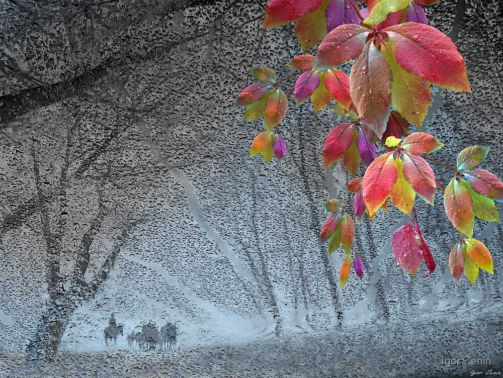 End of November by Igor Zenin