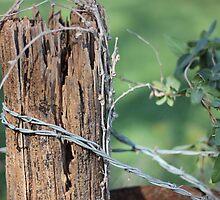 Wooden Post by AbigailJoy