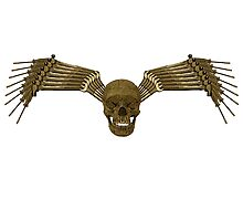 gold and black tool skull wings Photographic Print