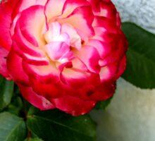 Flower 2 Sticker