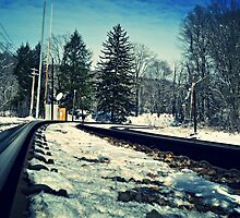 Snow Covered Tracks by wjwphotography
