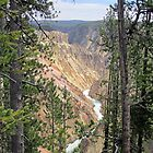 Peek-a-canyon by podspics
