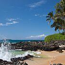Makena Cove, Maui by Barb White