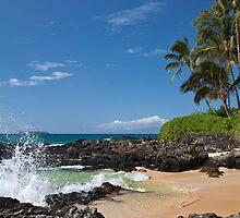 Makena Cove, Maui by Barb White