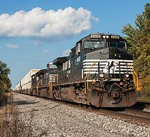 Norfolk Southern Container Train by StonePhotos