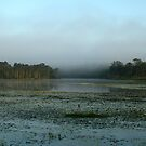 Leslie Harris Dam  by Rhapsody