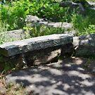 The Hobbit's Bench by Scott Mitchell