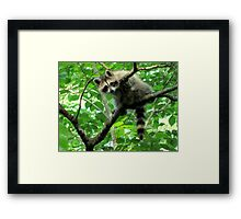 Yeah, I'm just hangin' out. Whatchu doin'? Framed Print