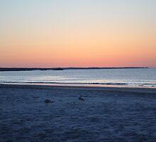 Beach Sunrise- RI by MikeCwynar