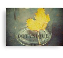 botanique Canvas Print