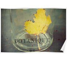 botanique Poster