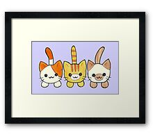 Three Cute Kittens Framed Print