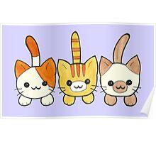Three Cute Kittens Poster