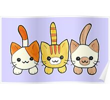 Three Cute Kittens Poster