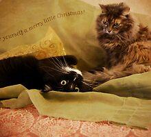 Merry Little Christmas by Lynn Starner