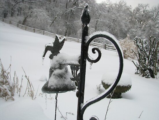 Snow Bird by Ron Russell