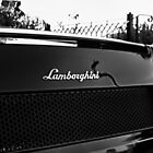 Lambo b&w by Beau Williams