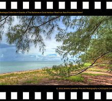 Nostalgia Collection • Islands of The Bahamas • Coral Harbour Beach on New Providence Island by Jeremy Lavender Photography