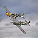 The Old Flying Company -  Ferocious Frankie, And MH434 by Colin J Williams Photography