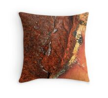 Rusty Pit Throw Pillow