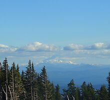 View from Mt.Hood by Bhabes