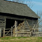 Lincoln Barn Illinois by Bevin Allison