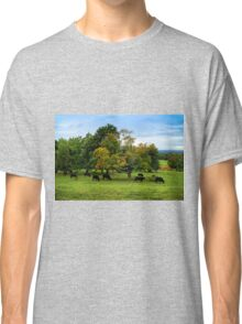 Country scene in New England Classic T-Shirt
