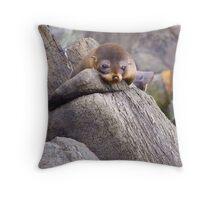 Young Australian Fur Seal Throw Pillow