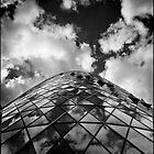 The Gherkin London by Ward McNeill