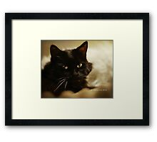 Oh, Roo, it's been a year since you left... Framed Print