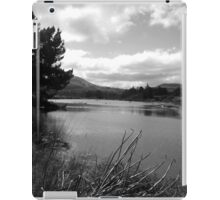 Dark Lagoon iPad Case/Skin