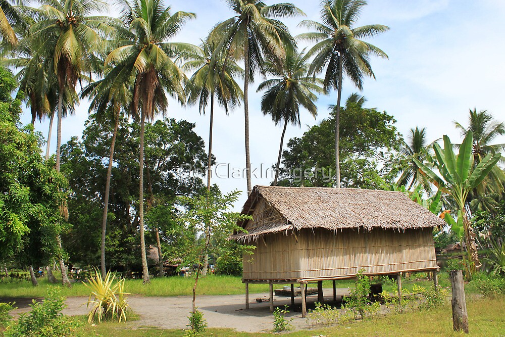 New Guinea Hut  by BenClarkImagery