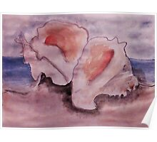 Conch shells #2, watercolor Poster