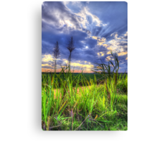 By the By Canvas Print