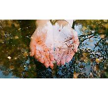. Photographic Print